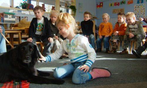 Hond in de klas bij het Sophia SnuffelCollege