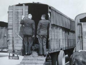 inspectie transport koeien