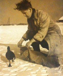 Winterhulp aan vogels 1956 4